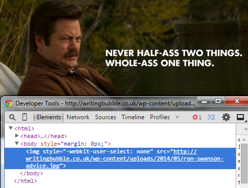 ron swanson quote